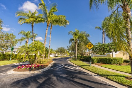 Gated community road with palms, South Florida