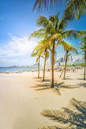 Palms with sunshine on Copacabana Beach. Lighrt effect. Rio de Janeiro, Brazil