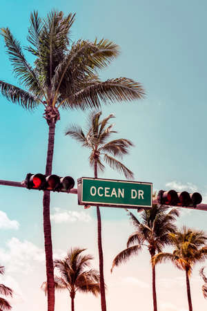 Ocean Drive sign with palm trees in background, Miami Beach