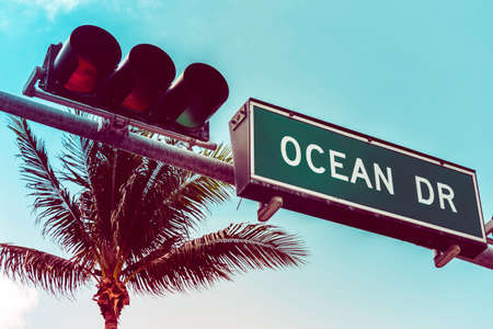 Ocean Drive street sign with palm trees in background, Miami Beach