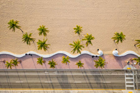 Aerial top view of Fort Lauderdale Beach walkway with palm trees, Florida Foto de archivo