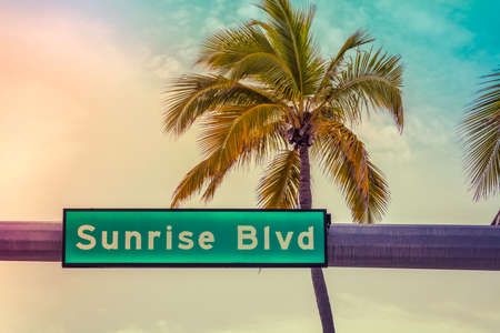 Illuminated road sign above the road with palm tree and dramatic sky. Summer tropic concept