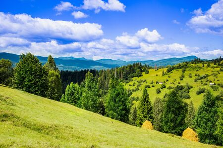 Beautiful Scenery. Carpathian Mountain range at the west of Ukraine Reklamní fotografie