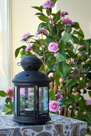 Vintage decorative lantern on a background of flowers, blurred background