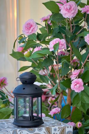 Vintage decorative lantern on a background of flowers, blurred background