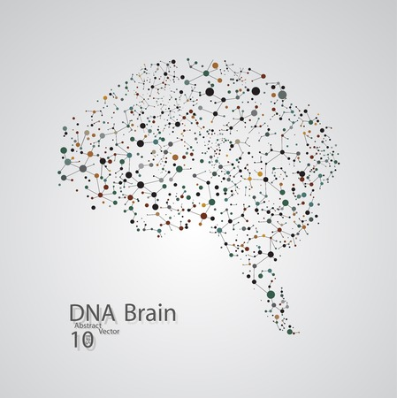 brain research: Molecular structure in the form of brain