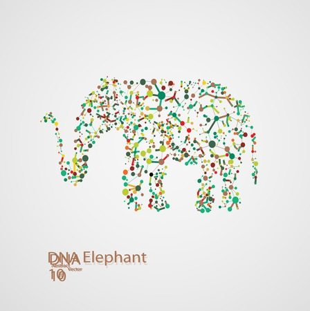 deoxyribose: Molecular structure in the form of elephant