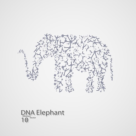 macromolecule: Molecular structure in the form of elephant