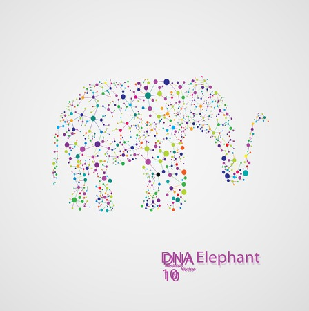 encoded: Molecular structure in the form of elephant