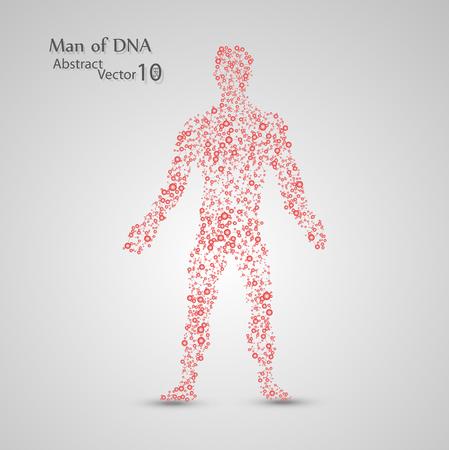 Molecular structure in the form of man,  elegant illustration