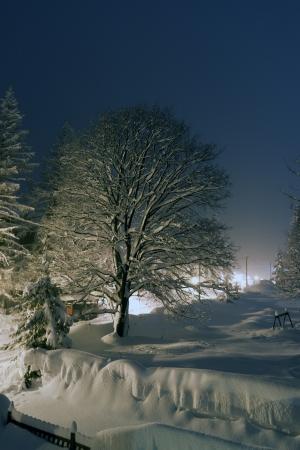 Winter in Pragelato Piedmont Italy