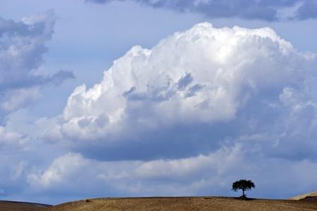 Landscape of Apulia Italy
