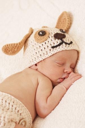 cute newborn baby sleeps in a knitted hat dogs Standard-Bild