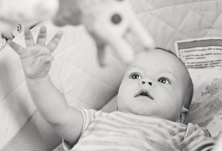 cute baby boy playing in the cradle with mobil ( black and white ) photo