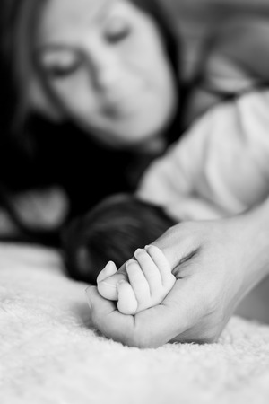gently: Baby hand gently holding adults finger ( black and white )