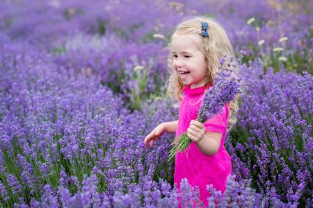 jolie petite fille: petite fille heureuse dans un champ tenant un bouquet de lavande Banque d'images