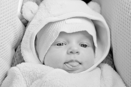 funny newborn baby in the car seat shows tongue ( black and white ) photo