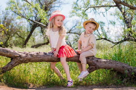 Two little brother and sister sitting in a tree, on a sunny summer day, outdoors photo
