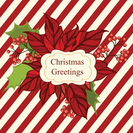 poinsettia: Christmas greeting card