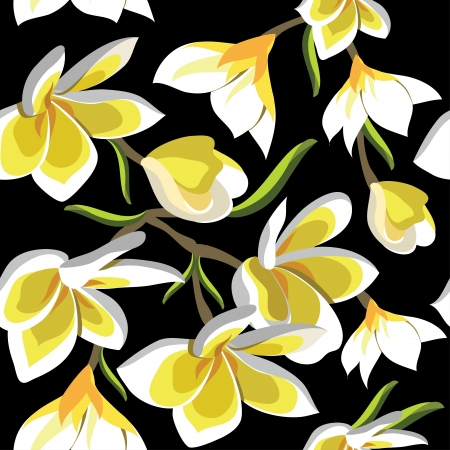 Floral seamless pattern with frangipani, hand-drawing.illustration. Vector
