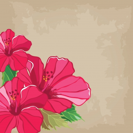 botanical branch: Floral pattern with hibiscus, hand-drawing.  Illustration