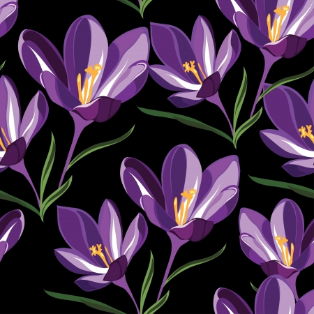 crocus: Seamless pattern  for design with spring flowers