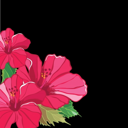 Floral pattern with hibiscus, hand-drawing.  Vector