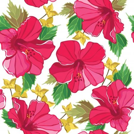 ibiscus: Floral seamless con ibisco, disegno a mano. Illustrazione di vettore.