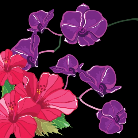 Beautiful floral pattern with hibiscus and orchid, hand-drawing. Vector