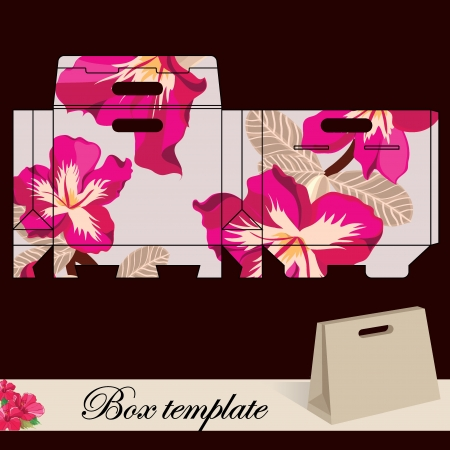 die: Gift box template Print  Cut along solid outer border with scissors Fold back on dashed lines to form your favor box  Use adhesive to secure side and bottom flap  Illustration