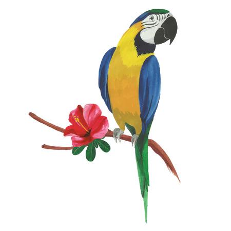 Geïsoleerde aquarel papegaai met tropische bloemen en bladeren.