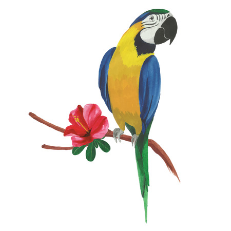 Isolated watercolor parrot with tropical flowers and leaves. Illustration