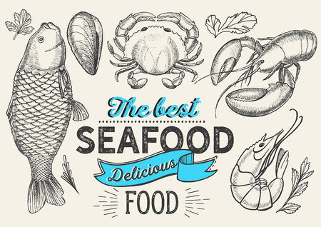 Seafood illustration - fish, crab, lobster, shrimp, mussel for restaurant menu. Vector hand drawn poster for food cafe and meal truck. Design with lettering and doodle vintage graphic.