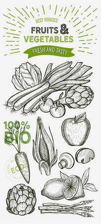 Vegetables and fruits illustration for farm market on background. Vector hand drawn organic and vegetarian food. Design poster with lettering and doodle vintage graphic.