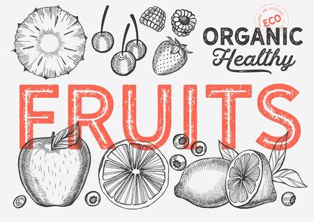 Fruits illustration for farm market 向量圖像