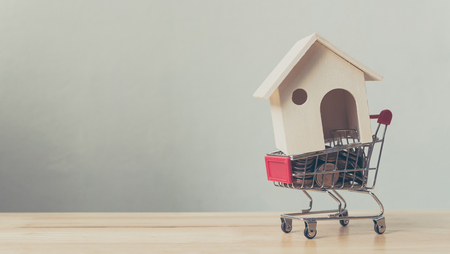 Property investment and house mortgage financial concept, House and money coin in shopping cart Foto de archivo
