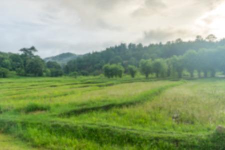 paisaje natural: Blur sunlight with Natural landscape