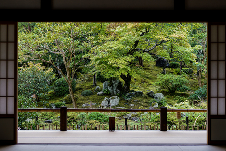 Japanese garden view from door