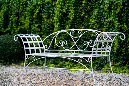 white metal garden bench with plant wall background
