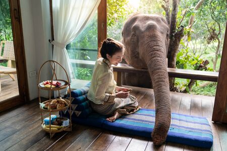 Beautiful Asia woman sit on wooden balcony and feed elephant.