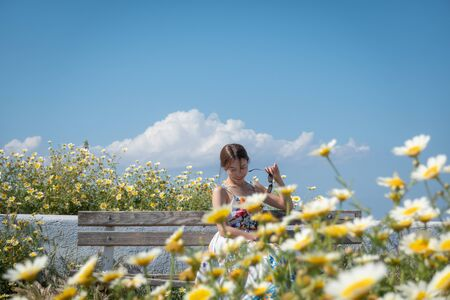 Happy woman in beautiful dress with flowers. Field with daisies. Stock Photo
