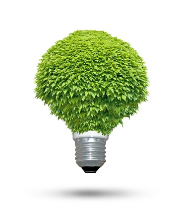 natural vegetation: Renewable energy source - Green lightbulb concept