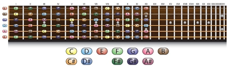 fretboard: Schematic view of a guitar fretboard with each note  Illustration