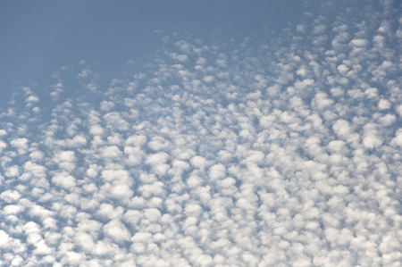cirrus: Lots of tiny cirrus clouds on white sky Stock Photo