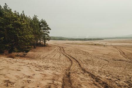 Bledow desert (Desert Bledowska) biggest sand desert in Silesia region in Poland