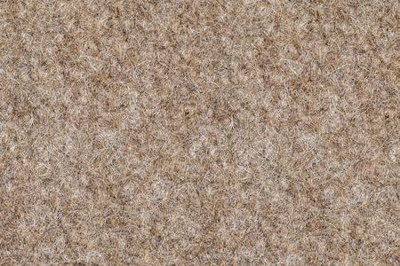 shaggy: shaggy carpet Stock Photo