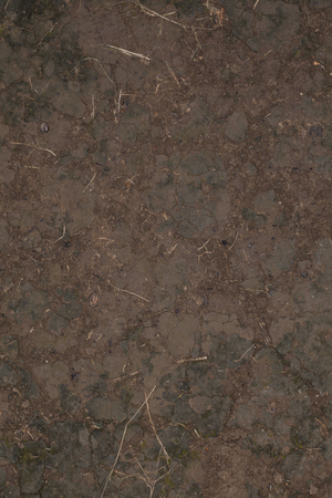 clay earth, close up background