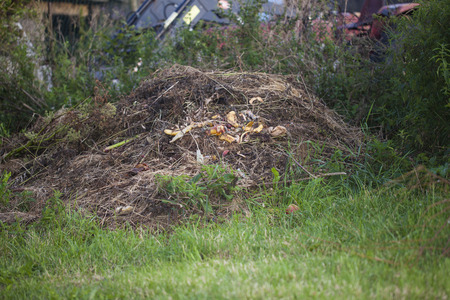 Recycling garden and kitchen waste on a compost heap