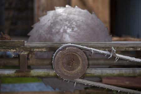 abandoned, circular saw for wood