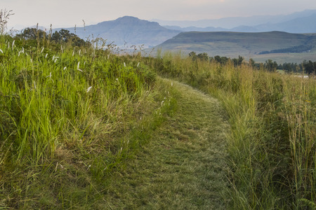 field path in the mountains, Drakensberg, South Africa Stock Photo